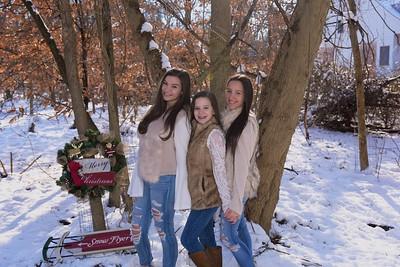 Woods Christmas 2017