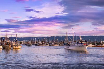Homer  Harbor