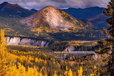 Golden Denali Train.