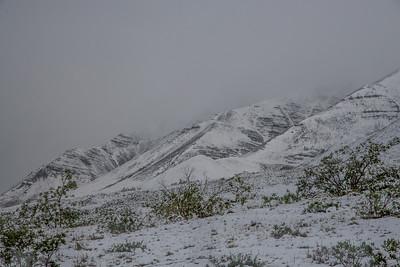 Denali, July snowstorm