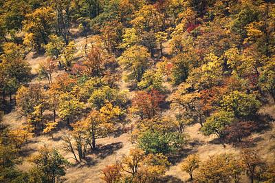 Cascade-Siskiyou National Monument, OR