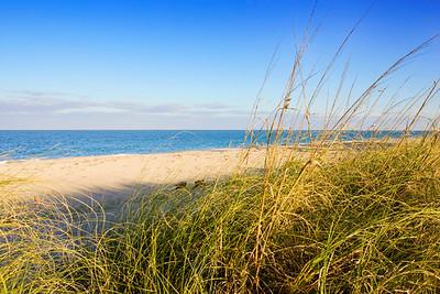 Beach at Ocean Ridge