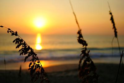 Sun Rise 2 Vero Beach 10-2006