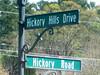 Bradshaw Farm-Woodstock GA Cherokee County (7)