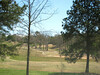 Bradshaw Farm-Woodstock GA Cherokee County (17)