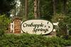 Crabapple Springs (3)