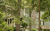 Crabapple Springs (4)