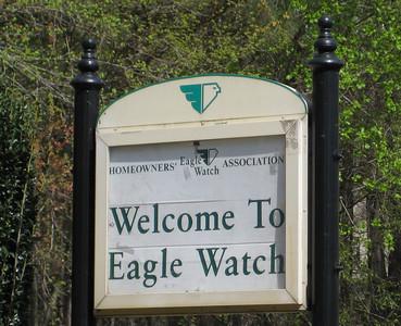 Eagle Watch-Cherokee County Georgia Woodstock (1)