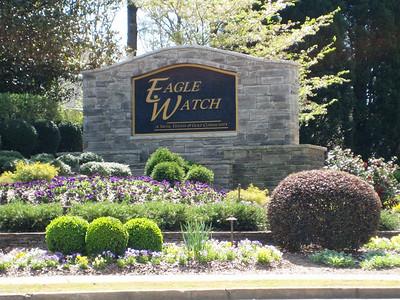 Eagle Watch-Cherokee County Georgia Woodstock (7)