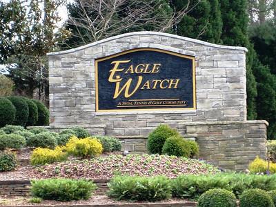 Eagle Watch-Cherokee County Georgia Woodstock (9)