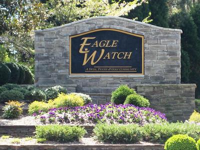 Eagle Watch-Cherokee County Georgia Woodstock (5)