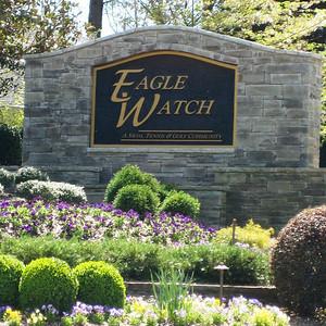 Eagle Watch-Cherokee County Georgia Woodstock (6)