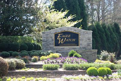 Eagle Watch-Cherokee County Georgia Woodstock (4)