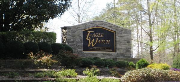 Eagle Watch-Cherokee County Georgia Woodstock (2)