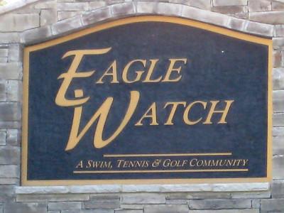 Eagle Watch-Cherokee County Georgia Woodstock (8)