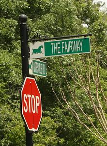 Fairway Estates Woodstock Georgia Community (6)