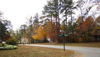 Farmington IV Neighborhood Woodstock GA (14)