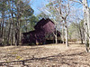 A Purple House In Woodstock GA (3)