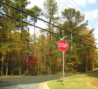 River Oaks Woodstock GA Home Neighborhood (4)