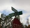 Southern Oaks Woodstock GA Community (5)