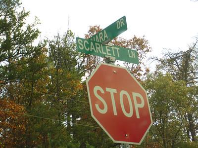 Southern Oaks Woodstock GA Community (3)