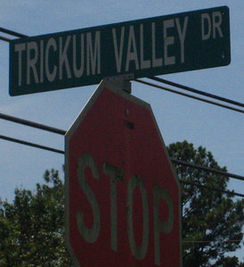 Trickum Valley Woodstock Georgia (1)