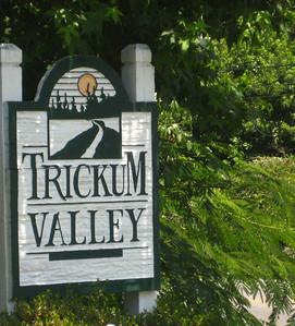 Trickum Valley Woodstock Georgia (3)