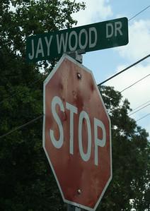 Woodland East Community Woodstock GA (2)