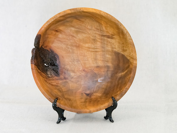 Camphor Bowl with Bark Inclusions