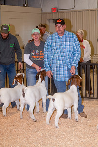 ww_goats_20191102_adults-12
