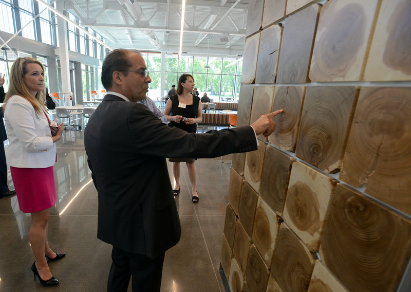 Fort Collins City Council member Ray Martinez examines the rings in the slices of ash wood that form a wall in the cafeteria at Woodward Inc.'s new Industrial Turbomachinery Systems building in Fort Collins during a tour Tuesday, June 7, 2016. At left is Jennifer Ray, program manager for the new facility. The trees were cut down when the campus was built. (Photo by Craig Young / Loveland Reporter-Herald)