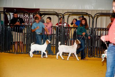 ww_summer_classic_2020_goats_020