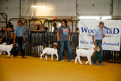 ww_summer_classic_2020_goats_021