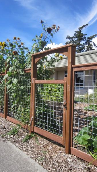 Gate, elementary school garden