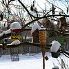 Deck Birdhouses in Snow