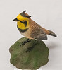 Roger Anderson - Horned Meadow Lark - Bass Wood