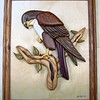 Red Tailed Hawk by Jack Labor<br /> <br /> $ 300