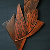 Rosewood Abstract
