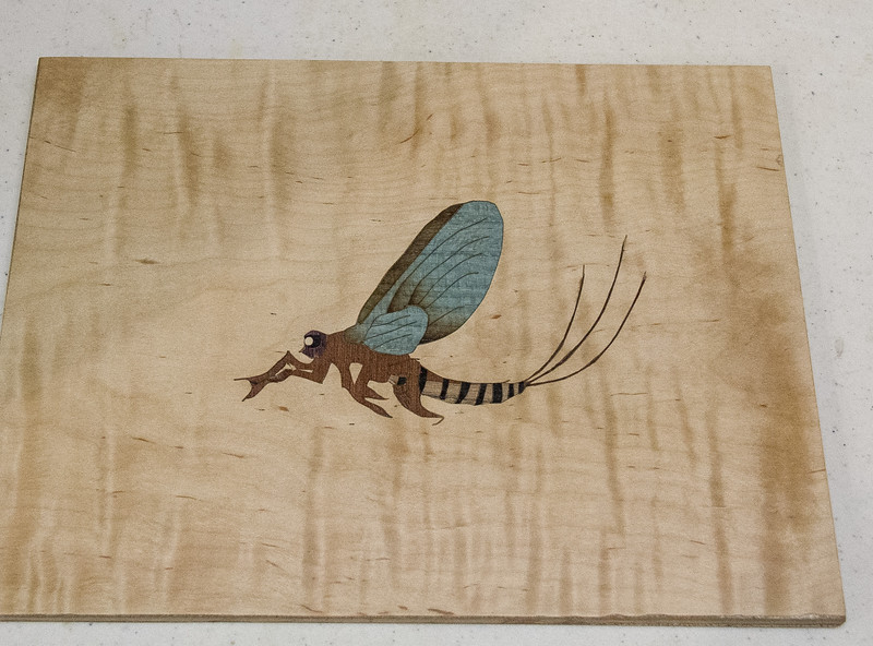 Bill Fanter showed his Marquetry Workshop project -  May 2017