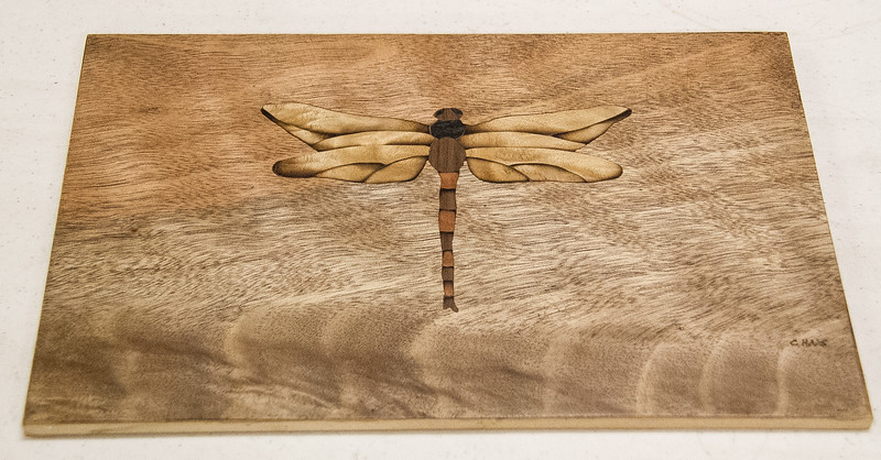 Chuck Haas showed his Marquetry dragonfly project.  May 2016
