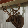 The finished product hanging on the shop wall.  It's a perfect 12 point buck (and no taxidermy fees).