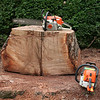 That is the smaller chainsaw sitting on top of the stump half.