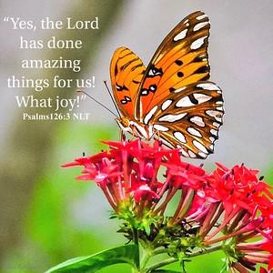 Psalms 126:3 NLT