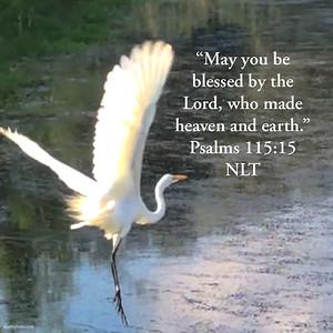 Psalms 115:15 NLT