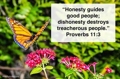 Proverbs 11:3 NLT