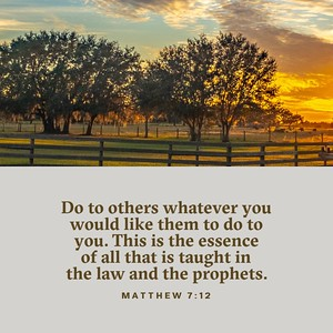 Matthew 7:12 NLT