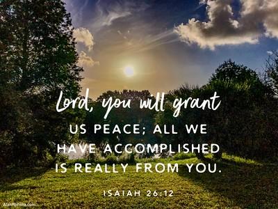 Isaiah 26:12 NLT