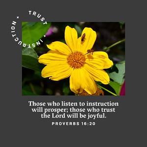 Proverbs 16:20 NLT