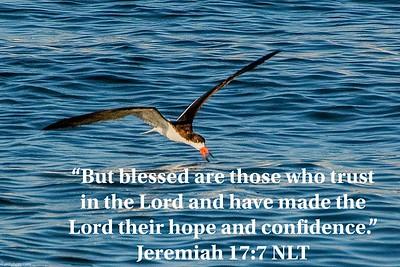 Jeremiah 17:7 NLT
