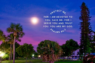Psalms 86:2 NLT